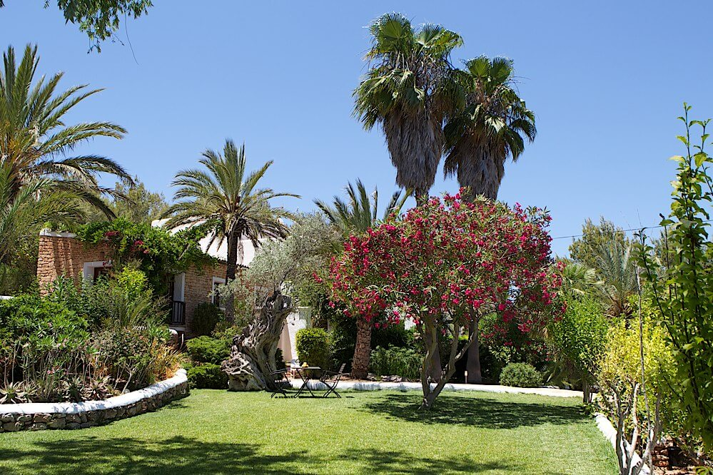 ibiza-villas-direct-ibiza-villa-rentals-can-blau18